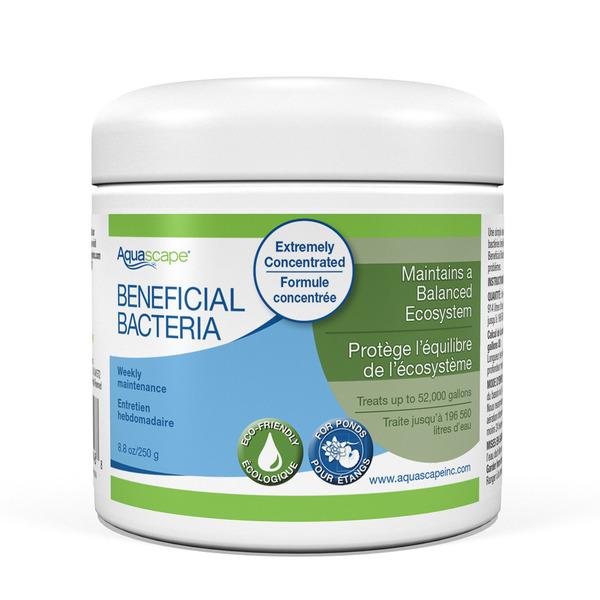 Aquascape Beneficial Bacteria For Ponds Dry 8 Oz 250 G
